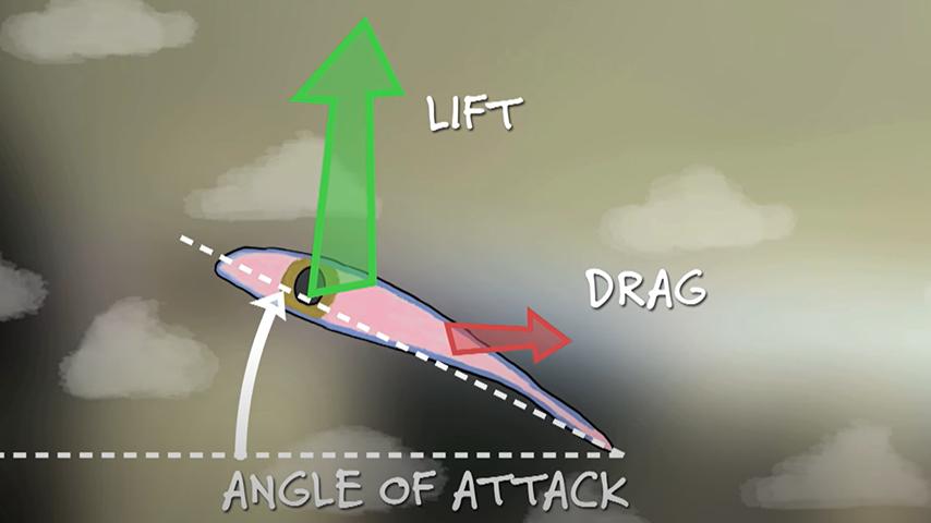 Learn How Wings Work