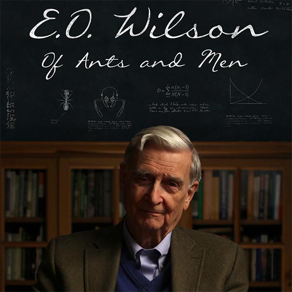 E.O. Wilson - Of Ants and Men